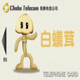 TX_BG_TELcard_04_BC